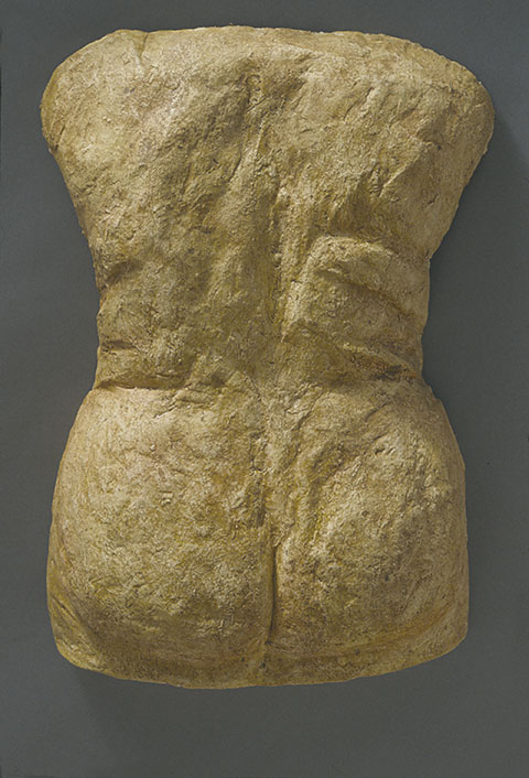 Venus Variation Back Relief